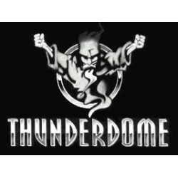 Thunderdome - The Megamixes / TR 028CD / Merchandising only artwork