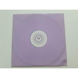 "Dr. Motte & WestBam ‎– Love Parade 2000  (12"")"
